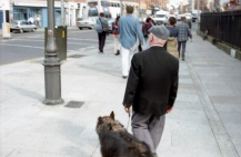 Walking in Dublin (1999)